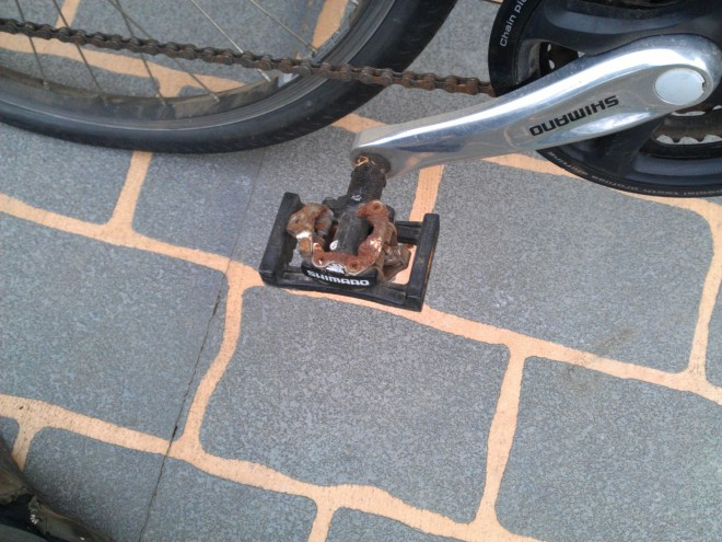 clipless pedals (and flats)